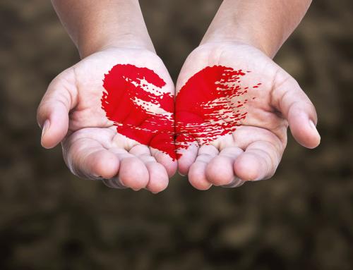 Projekt Öffentlichkeit: Erst das Herz, dann die Türen öffnen